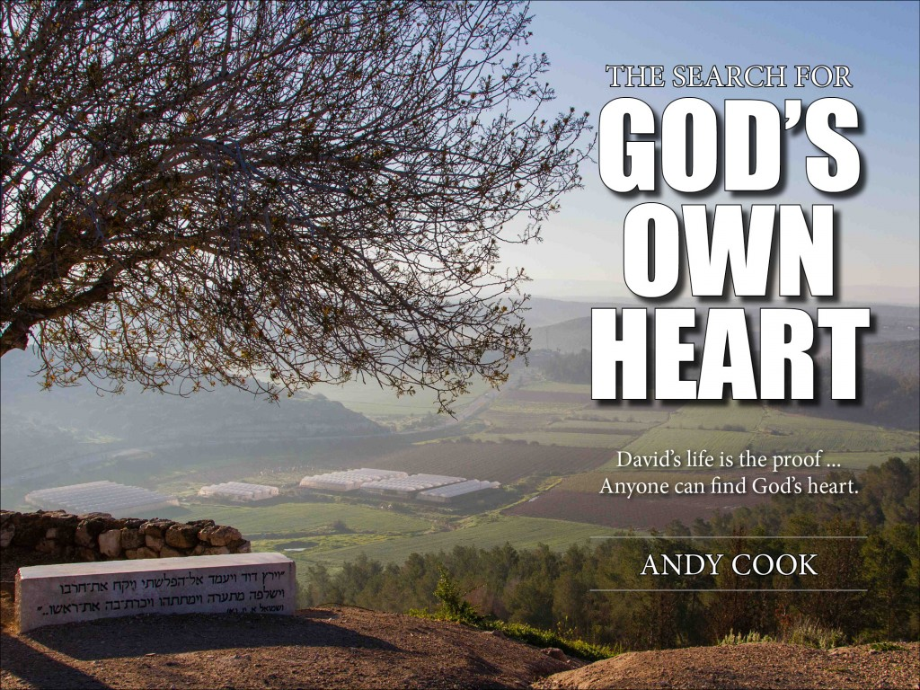 Search for Gods Own Heart cover