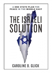 web israel solution